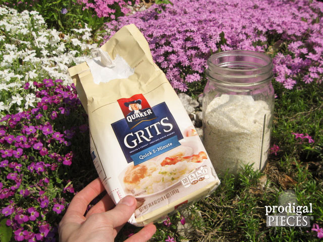 Stop the Ants! Natural Ant Control Using GRITS | Prodigal Pieces | www.prodigalpieces.com #prodigalpieces
