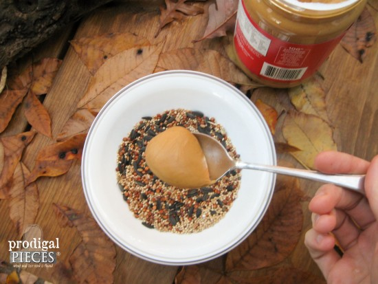 Peanut Butter for Birds to Have Protein on DIY bird feeder | Prodigal Pieces | www.prodigalpieces.com