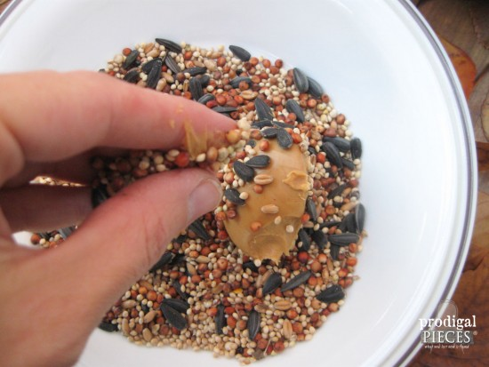 Bird Seed and Peanut Butter for Birds to Have Protein | Prodigal Pieces | www.prodigalpieces.com